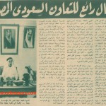 Cooperation between Saudi and Egypt