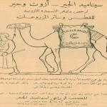 Advertisement- Cyanamide- 1929